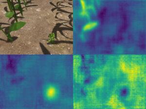 Segmantic segmentation on a simulated maize field